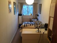 Double Room to rent in Stoke Newington. Large communal lounge and kitchen/dining room.