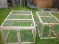 rabbit/guinea pig runs