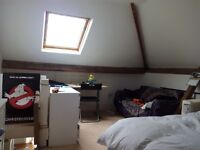 Spacious double attic room (one person) in Botley