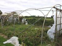 Poly tunnel frame - Large