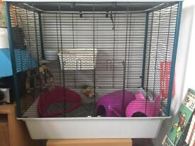 Feret plus cage used for rats