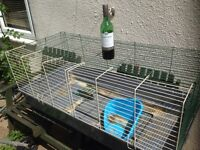 Rabbit hutch cage guinea pigs