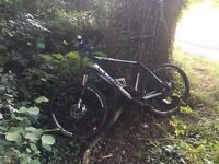 STOLEN Cube Acid Mountain Bike