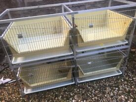 small animal cages for transport