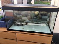 Fluva Roma Tank and Cabinet