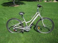 Garneau  Kashmir 100 Bike