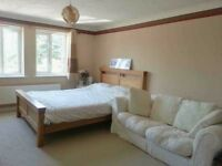 Very large double bedroom available for professional-full time working Individual