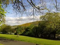 Edinburgh festival rent ( Holyrood