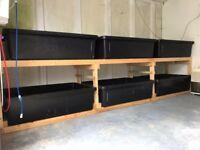 Custom Made 1,350lt 6 Tub Fish Breeding/Holding, Plant Growing - Running System