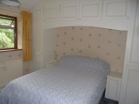 Comfortable Double Room available for a professional staying in Woking four nights a week.