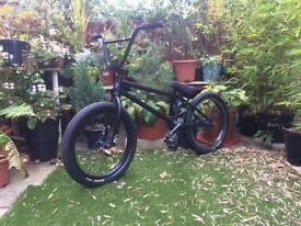 Custom BMX + additional frame