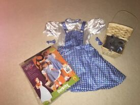 Dorothy From The Wizard Of Oz Costume