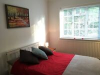 Beautiful room to rent Mon-Fri only, 13 mins walk from Shortlands Station and Bromley North station