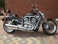 Harley Davidson Vrod excellent condition black low millage