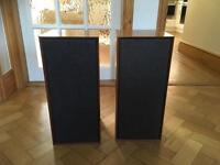 Celestion Ditton speakers