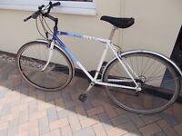 Raleigh Pioneer Classic Gents Bike