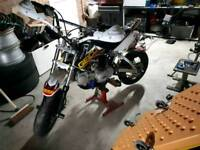 Shineray racing pit bike