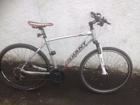 Giant Roam male hybrid bike. Fully serviced, fully safe and ready to go.
