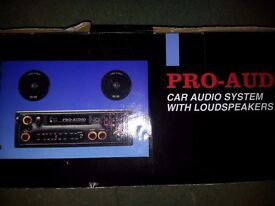 Car audio system with loudspeakers - Charity sale