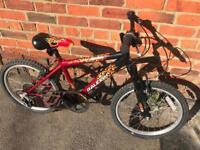 """Raleigh HotRod Boys 20"""" Wheels. Great condition. Serviced. Free Lights & Delivery."""