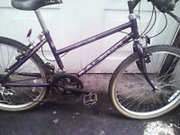 RALEIGH ,GIRLS MOUNTAIN BIKE,14 INCH FRAME,24 INCH WHEELS,18 GEARS,AGE 9 UPWARDS,GOOD CONDITION