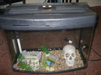 Interpet Fishxbox aquarium / fish tank 64 litres