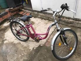 Electric bike large frame