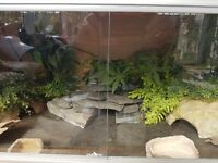 Reptile tank fuy equiped with heat mats