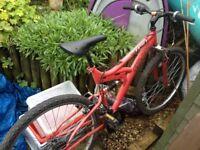 Pink Girl's Mountain Bike