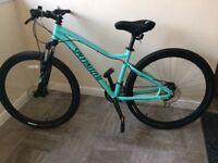 Women's mountain bike - never used !