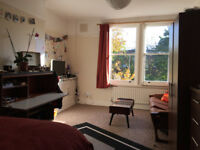 Beautiful, bright double room - amazing location (Caledonian Road)