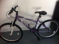 Ladies Apollo Mountain Bike 17inch