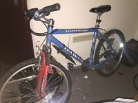 Dawes Tamarak Mountain Bike