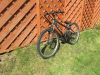 X Rated Jump Mountain Bike