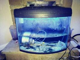 Reef max marine fish tank