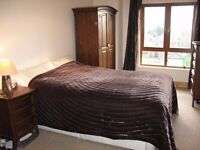 Double room available in comfortable house next to Ormeau park with easy access to city.