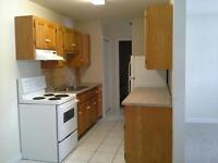 COZY 1BR HORTON PARK  $68-$685 H/HW INCLUDED AVAILABLE