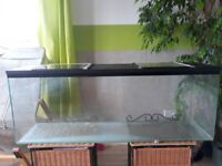 GLASS TANK FOR GERBILS DEGU HAMSTERS RATS ETC.