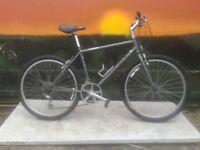 RIDGEBACK Omega Mountain Bike Hybrid