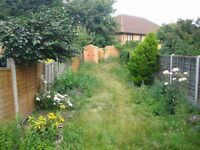 gardening services tree cutting grass cutting fencing