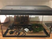 Tropical fish tank set up 60 ltr