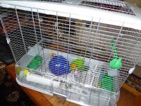 Hagen vision bird cage VGC