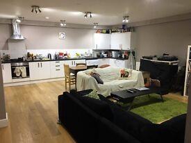 Double en suite room for rent, unfurnished, Balham