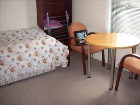 Winton-Quiet & clean medium sinle room