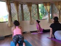 Private Yoga Classes in London