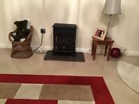 Electric fire with log burner effect