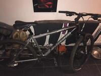 Carrera pedal bike