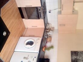 SPACIOUS 1 BEDROOM LUXURIOUS FLAT IN LEYTONSTONE E11.