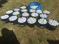 LOCALLY SOURCED AND PICKED GOLF BALLS FROM PRACTICE TO COMPETITION. ALL BRANDS AT LOWEST PRICES.