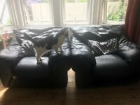 FREE 2 x Black leather armchairs